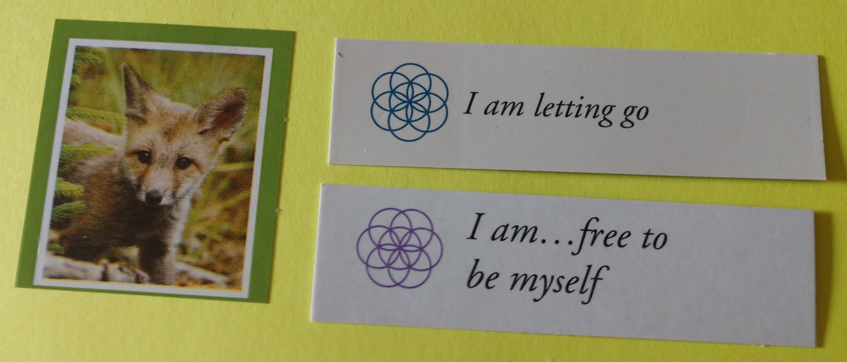 test Twitter Media - Today's Positive Thoughts: I am letting go and I am...free to be myself. #affirmation https://t.co/Wz2rMHMTLx