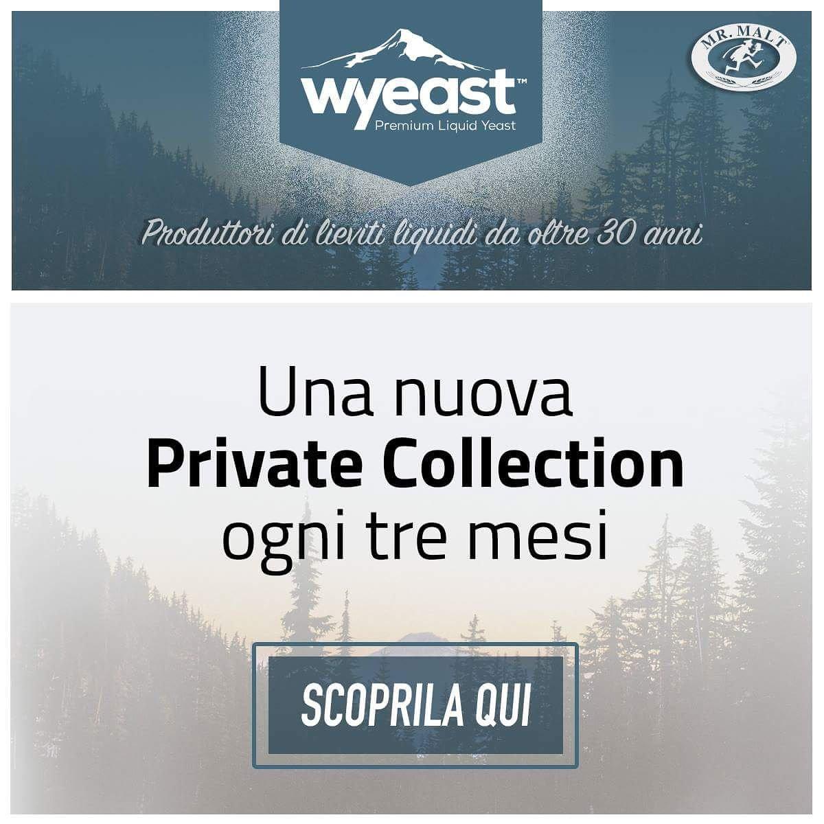wyeastlab