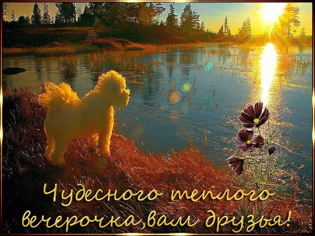 Новые открытки с пожеланиями удачного дня и хорошего настроения серые