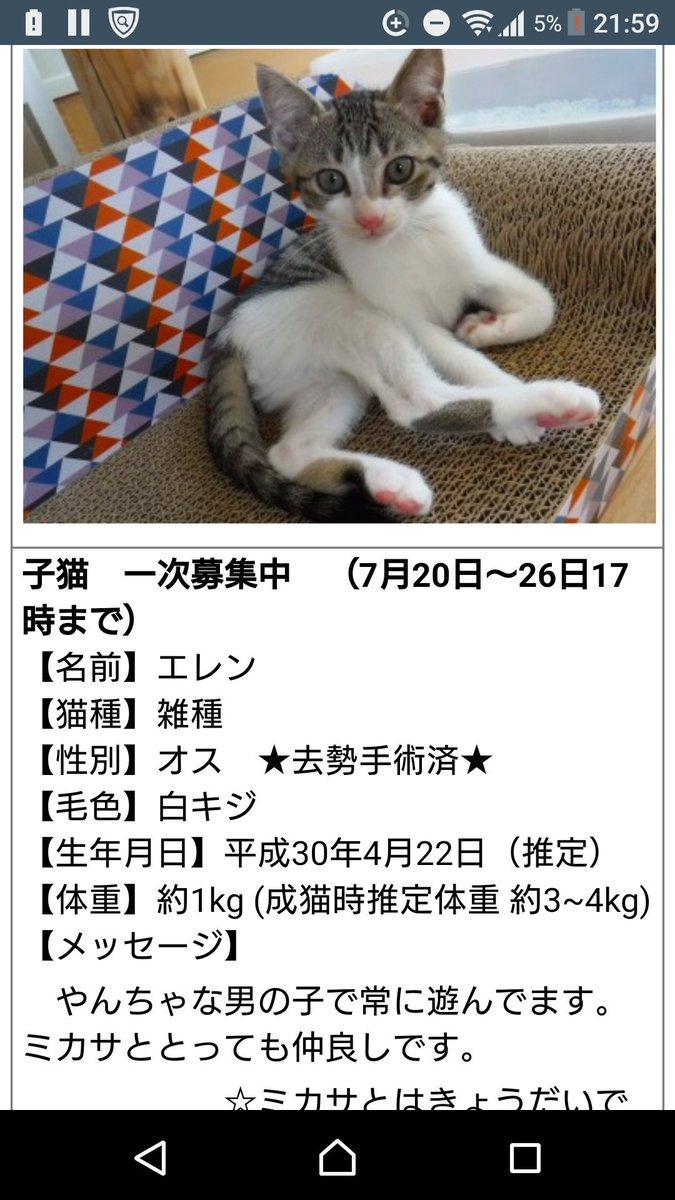 千鶴(nana名:真白心)