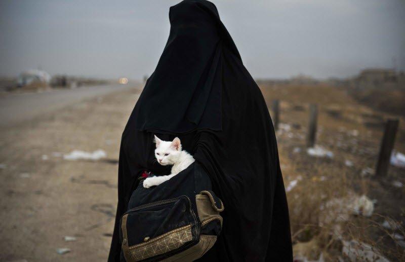 زن محجبهای با گربهاش در هنگام فرار از موصل از بهترین عکسهای نیویورکتایمز در سال ۲۰۱۶