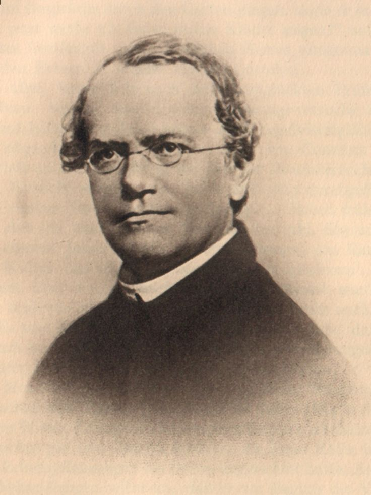 Gregor Mendel, founder of the modern science of genetics, was born #onthisday in 1822 https://t.co/RDTiODJjFR https://t.co/pqG2jorMYu