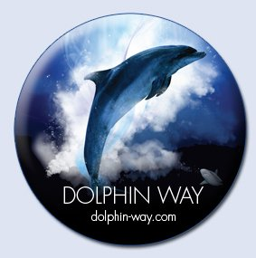 Beautiful Dolphin Footage - https://t.co/qal7gFRVJm #dolphin #dolphinway https://t.co/QLnwVdObaT