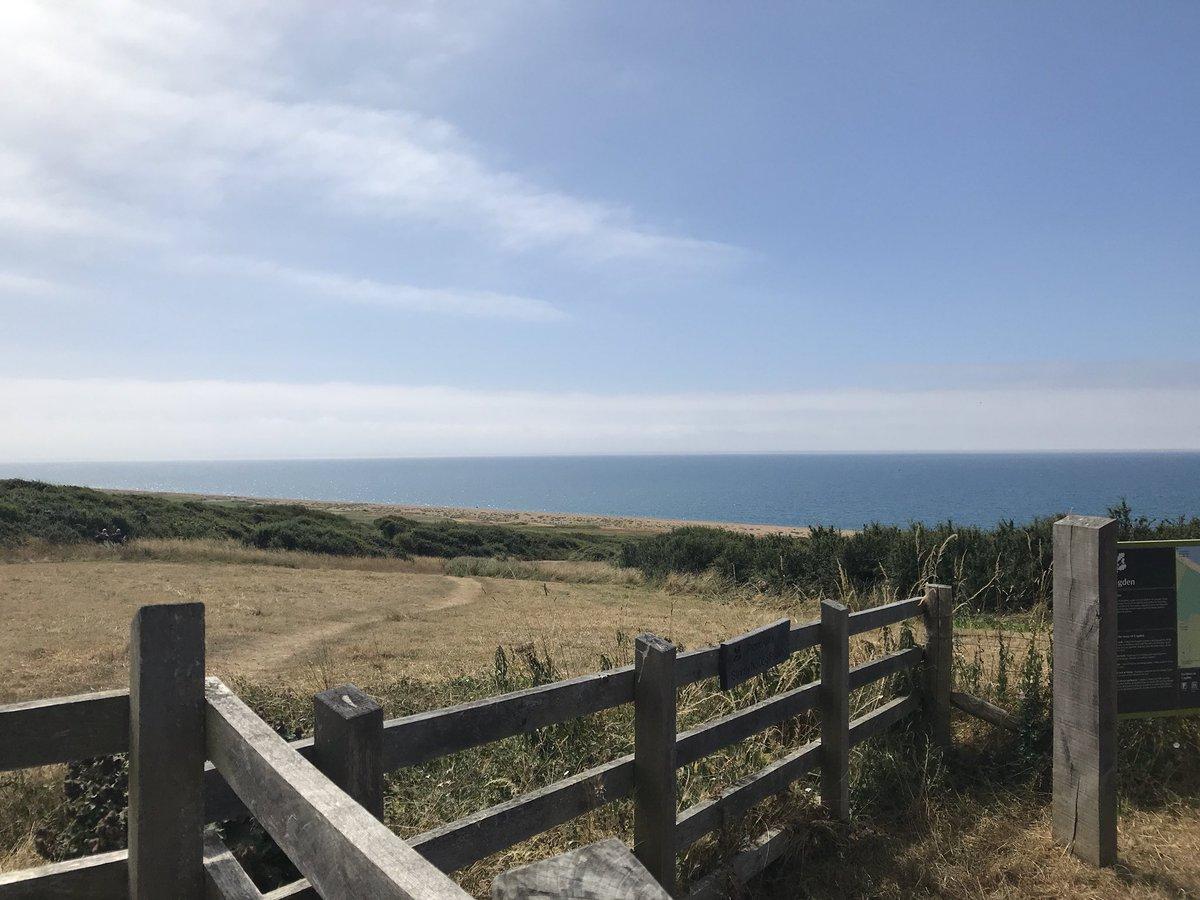 Dorset 💙