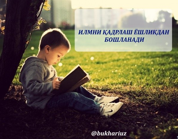http://www.bukhari.uz/index.php?option=com_content&view=article&id=2619:qadrlash&catid=31&Itemid=406&lang=uz…