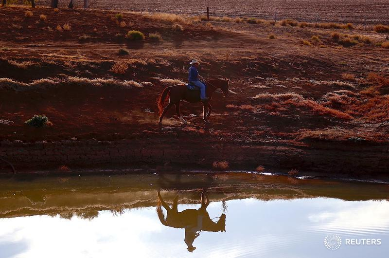 Farmer Scott Cooper is reflected in a dam as he rides his horse on his drought-affected property named 'Nundah' on the outskirts of Gunnedah, Australia