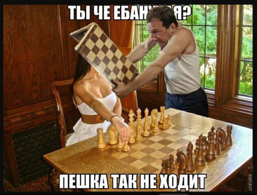 Под картинку, шахматы в картинках приколы