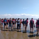 What a fantastic time we had today on the Morecambe Bay walk. Beautiful weather and scenery. Well done @Gallowaysblind for an excellent event. #ReadyToRamble
