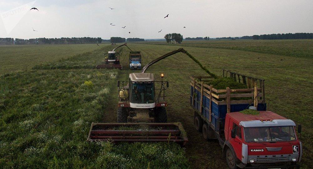 Avec l'embargo alimentaire, les entrepreneurs français veulent investir dans le secteur agricole russe https://t.co/dv2tv9dW10