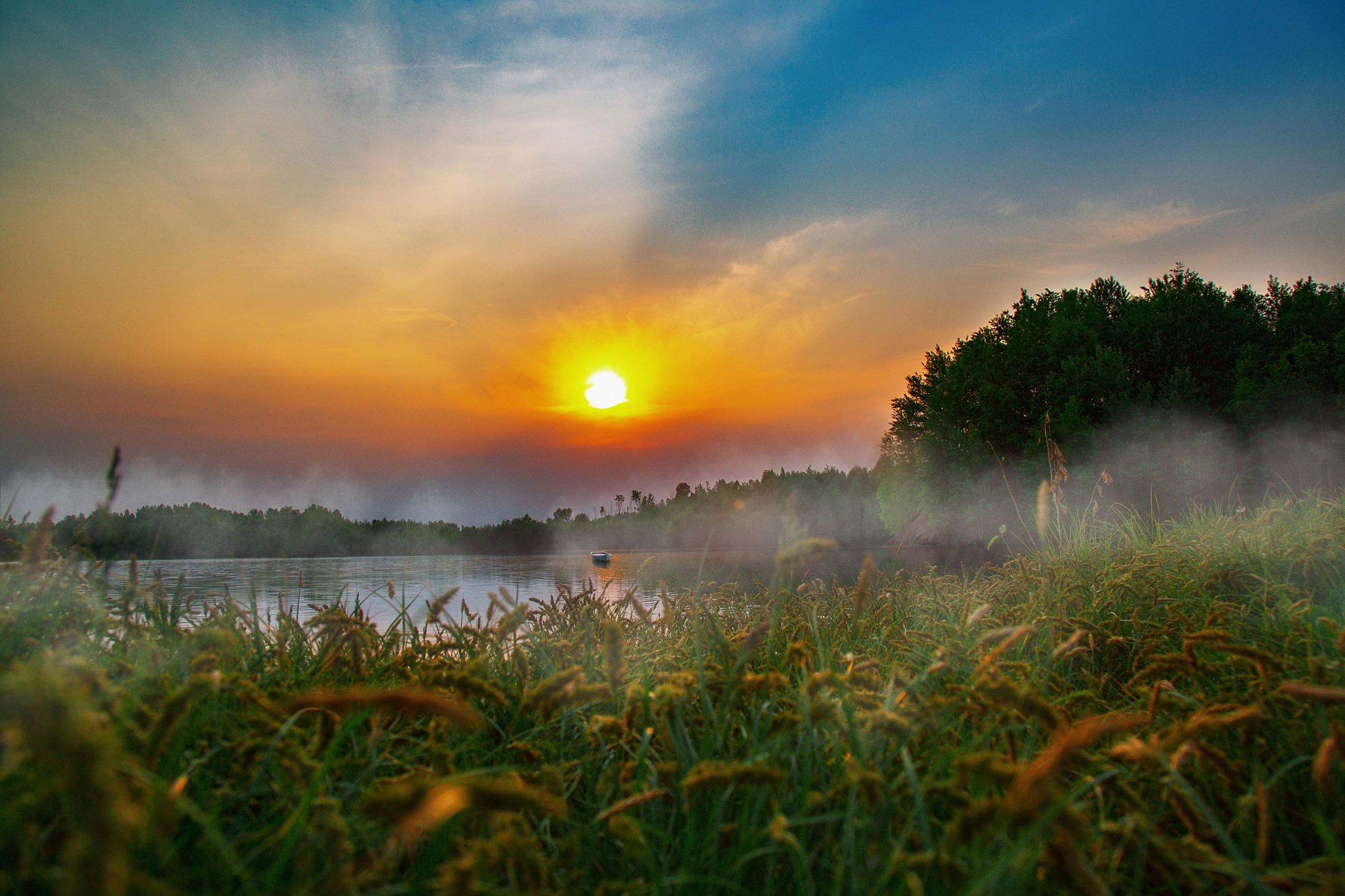 требование солнечное утро картинки и фото белых