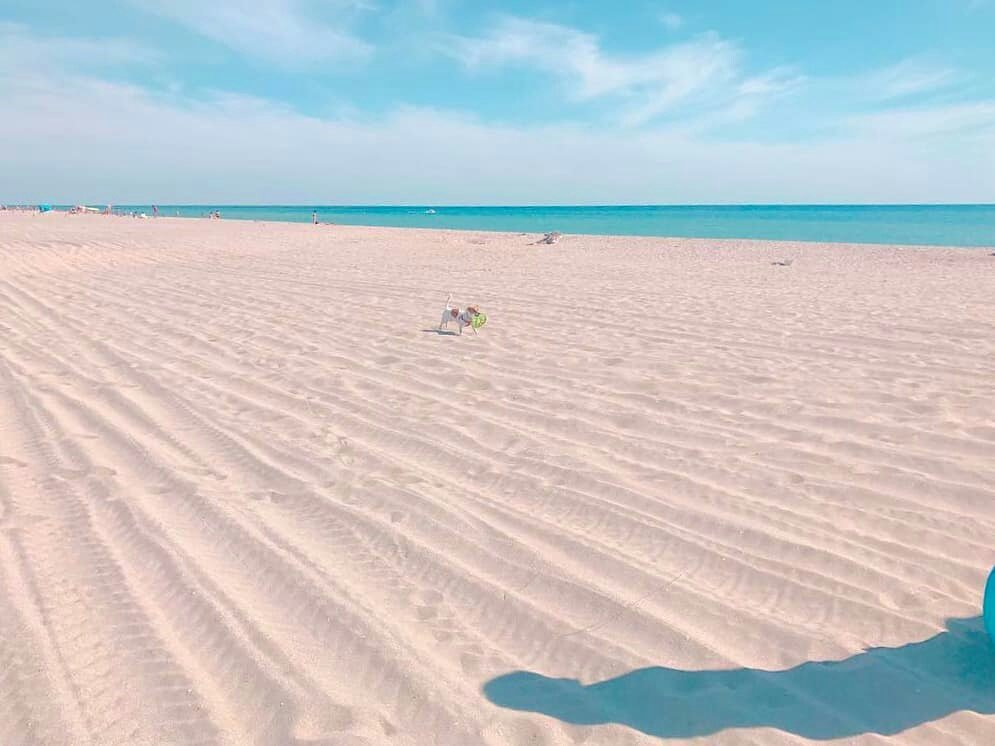 Фото моря в крыму поповка