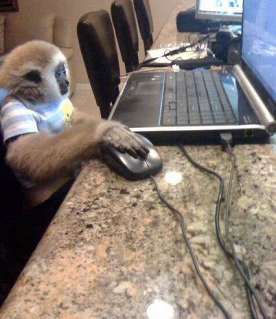 11 year old me putting viruses on the computer to win the free iphone 4s