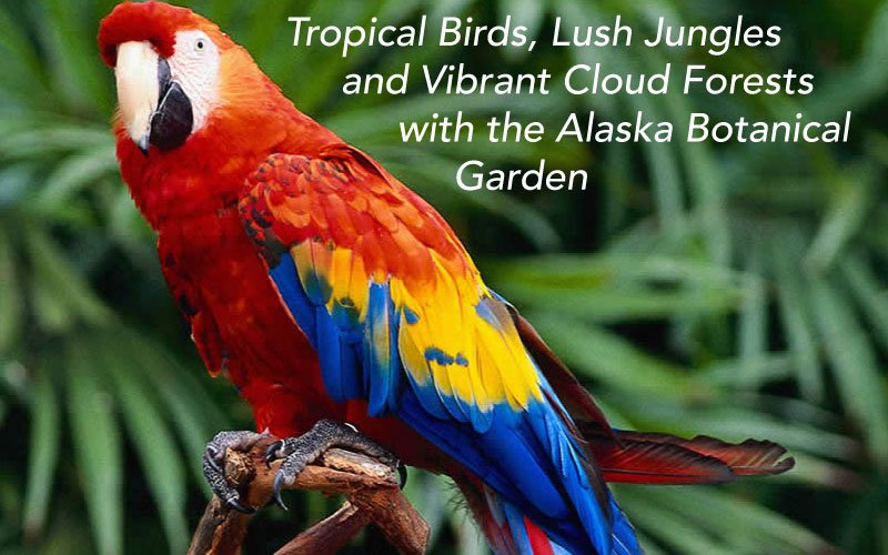 to purchase a ticket call the garden 770 3692 or visit httpalaskabgorg for infopictwittercom9kneysnyl7 - Alaska Botanical Garden