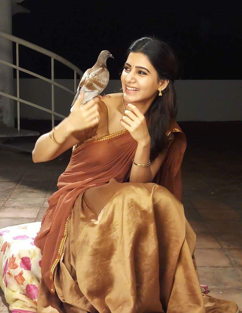 Samantha in Seema Raja
