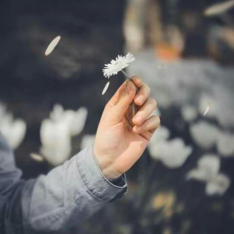A man travels the world over in search of what he needs and returns home to find it.  ผู้คนออกเดินทางไปรอบโลก เพื่อตามหาสิ่งที่เขาต้องการ และกลับมาที่เดิมเพื่อพบว่า สิ่งที่เขาตามหาอยู่กับเขามาตลอด  #คำคมชีวิต #คำคมภาษาอังกฤษ #คำคม #qoutes #กำลังใจ https://t.co/SrSR0Tk5SS