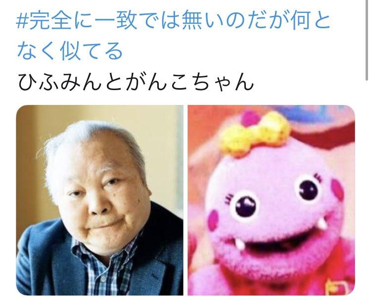 かん@小鳥遊さんの投稿画像