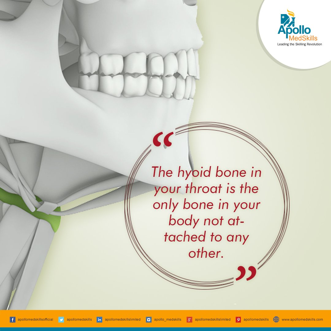 Hyoid Hashtag On Twitter
