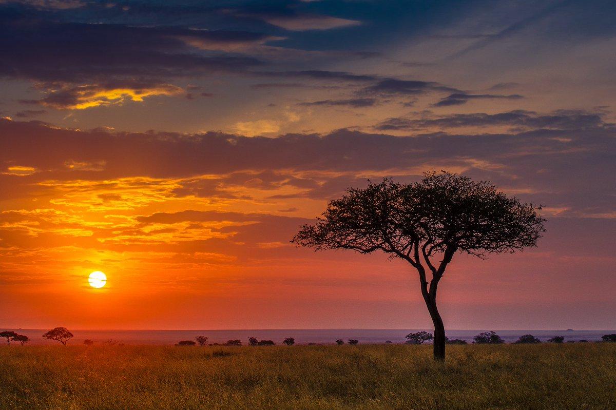 Картинки закаты в африке