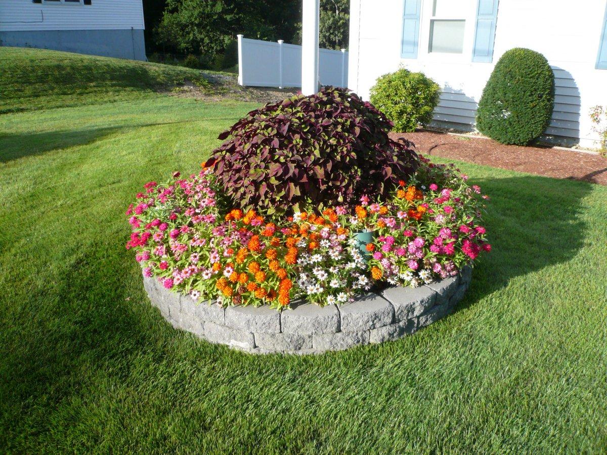 Оригинальная цветочная клумба фото