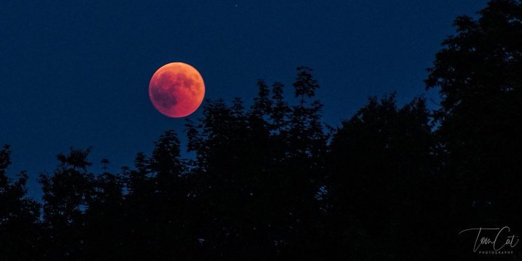 blood moon july 2018 qld - photo #9