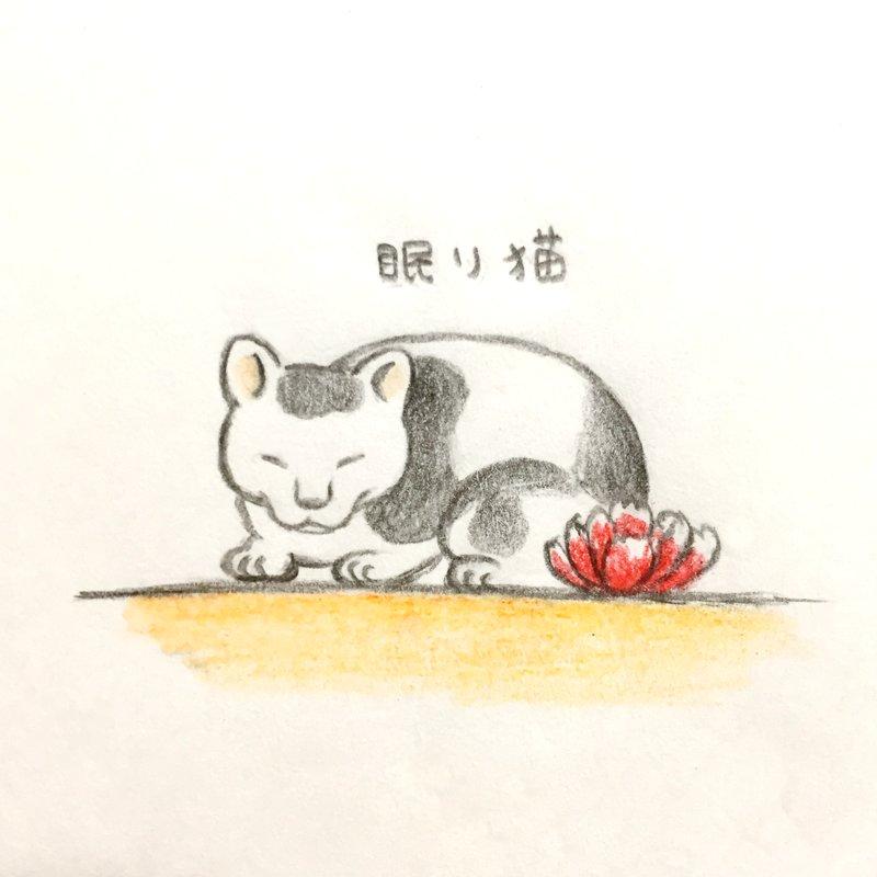 そみこ On Twitter 日光東照宮の眠り猫に似てる子に出会いました