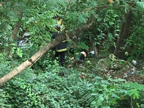 Image result for Muere mujer al lanzarse desde el puente Juan Bosch y caer al vacío
