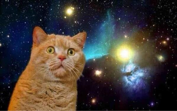 再現度高すぎ】宇宙の映像が流れてたテレビの前に偶然猫が座って例の ...