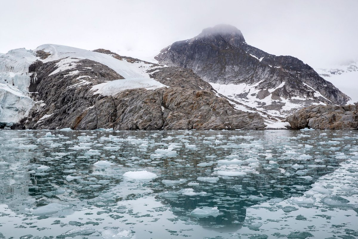 the effects of sea ice on the Loss of sea ice contributes to global warming by exposing dark open surfaces of water that then absorbs the sun's energy and in turn leads to polar sea ice melts each summer and reforms each winter—a freeze-thaw cycle that in the arctic has been dramatically altered by global warming.