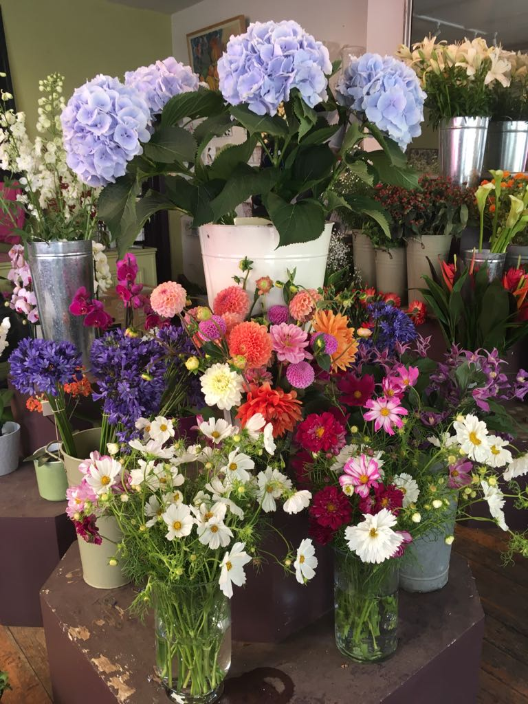 Daisies Flower Shop Daisiesoxford Twitter