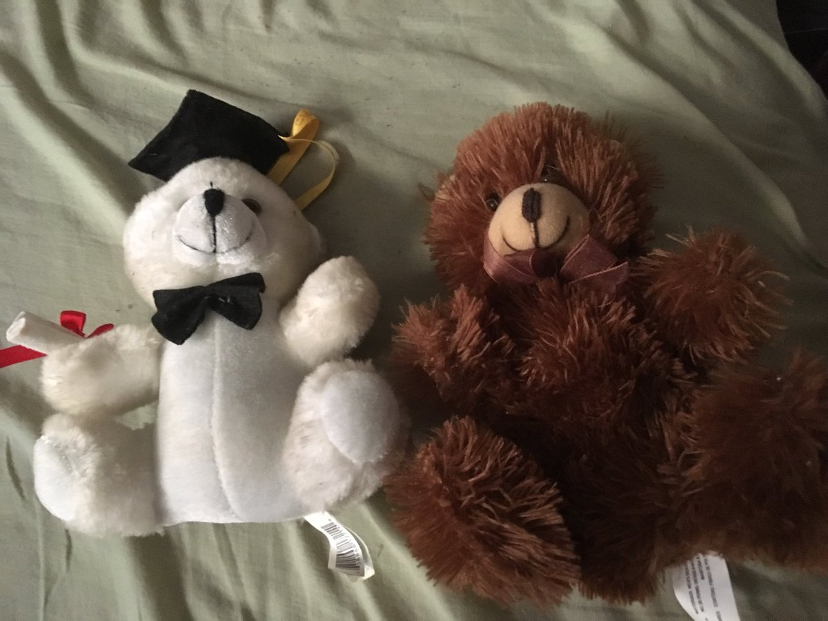 The Bears Who Saved Christmas.Michael Taylor On Twitter Bobsheaux My Bears I Have With Me While