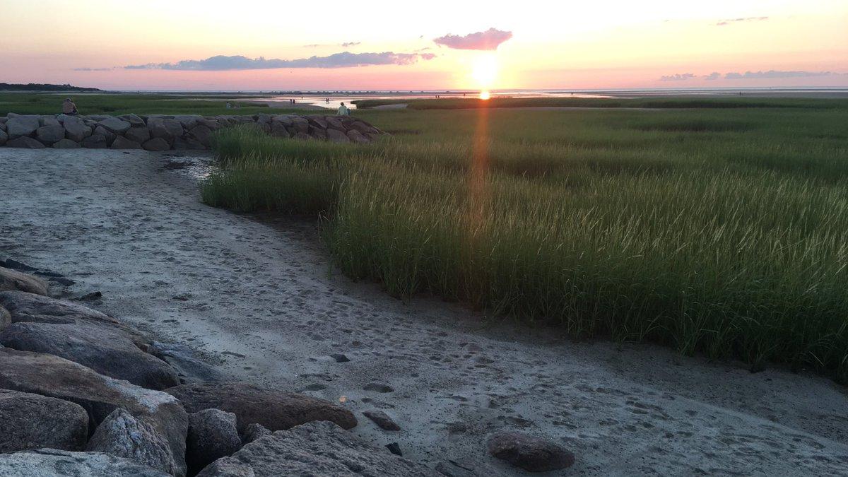 cherish the little things, like how beautiful the sunset was tonight 😍