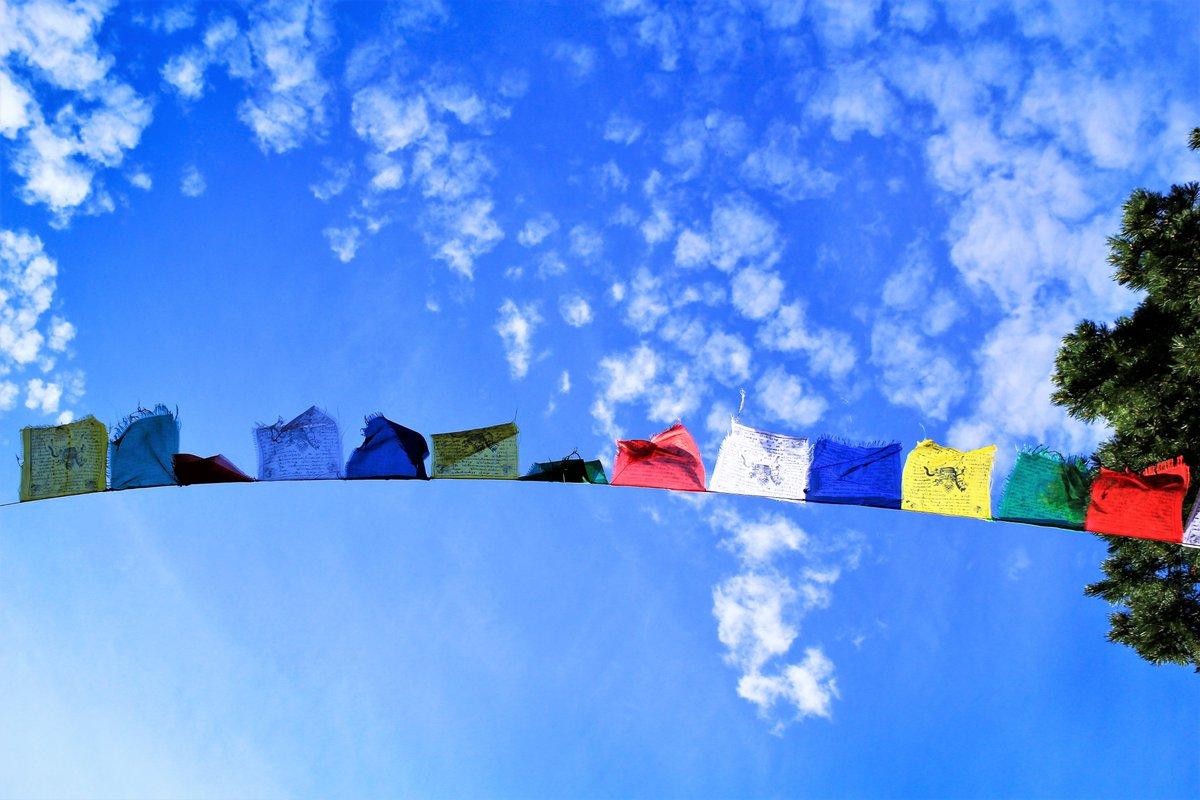 30 grad wäsche bei 40 grad aufhängen