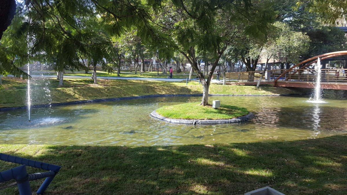 Lago Artificial del nuevo Parque Juárez