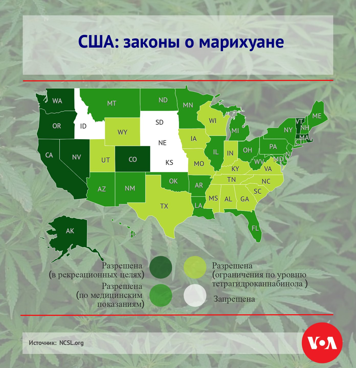 В каких штатах америки разрешена марихуана конопля лечебная трава