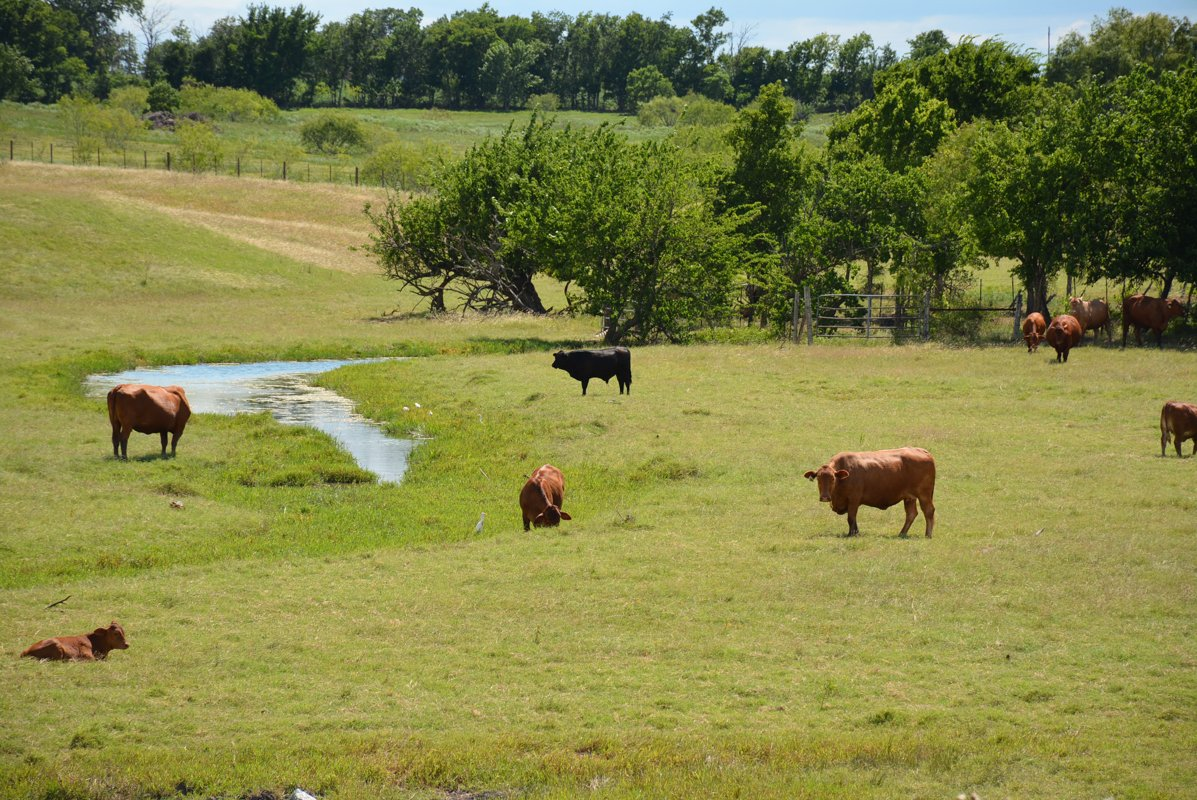 Farm Press On Twitter What Laws Apply To Leases How Much Should