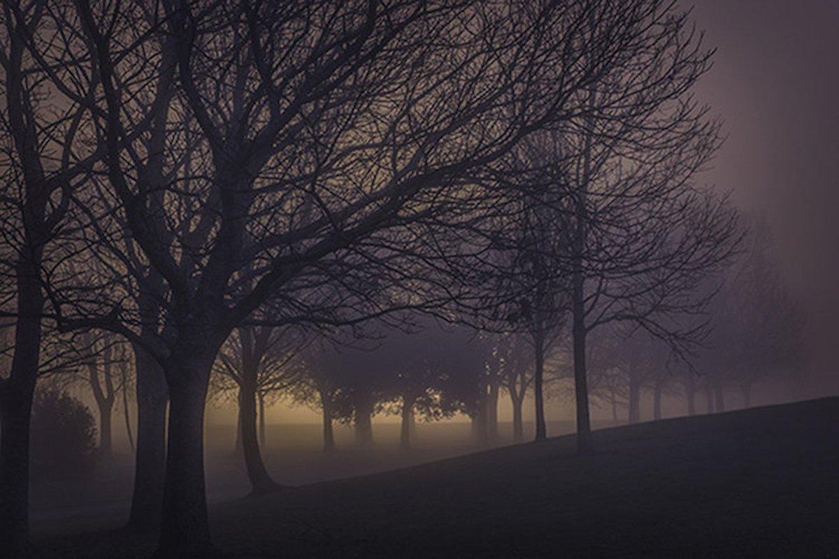 wandering alone at night - HD1200×800