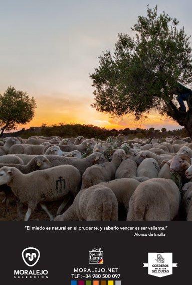SeleccMoralejo photo