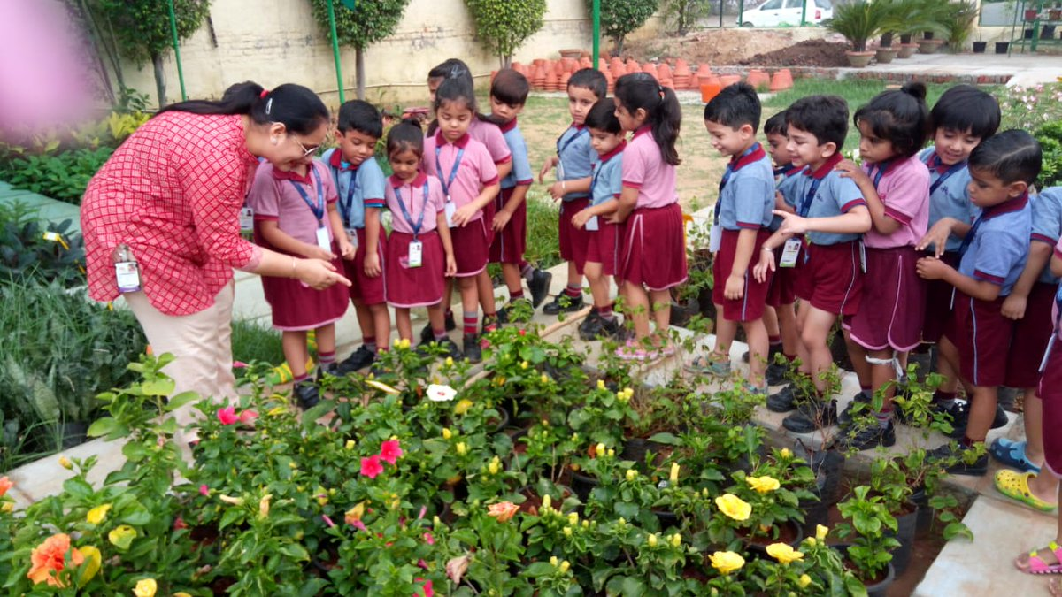 Planned A Trip To Nursery For The Kindergarteners Facilitate Learning On Ongoing Theme Green World Around Me Pic Twitter S6mskrhqj6