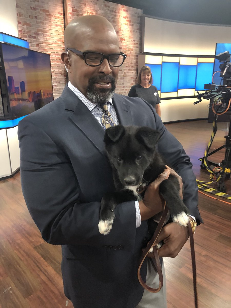 "Meet ""Grits""! He was our #SammyStar this morning.  He is up for adoption at Helping Strays.  #TISL #SoCute"