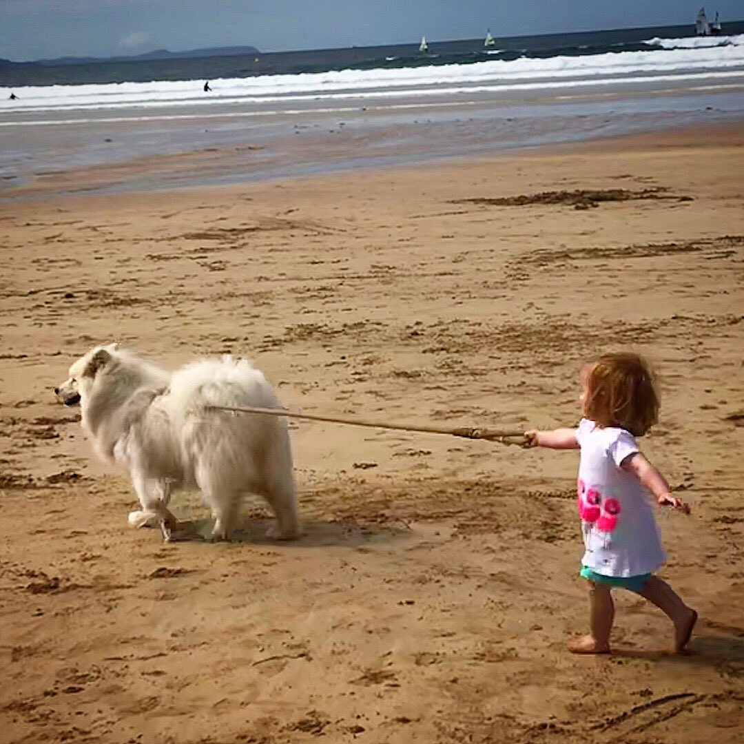 We're loving the North Coast with Zola and Aria this week! @VisitCauseway
