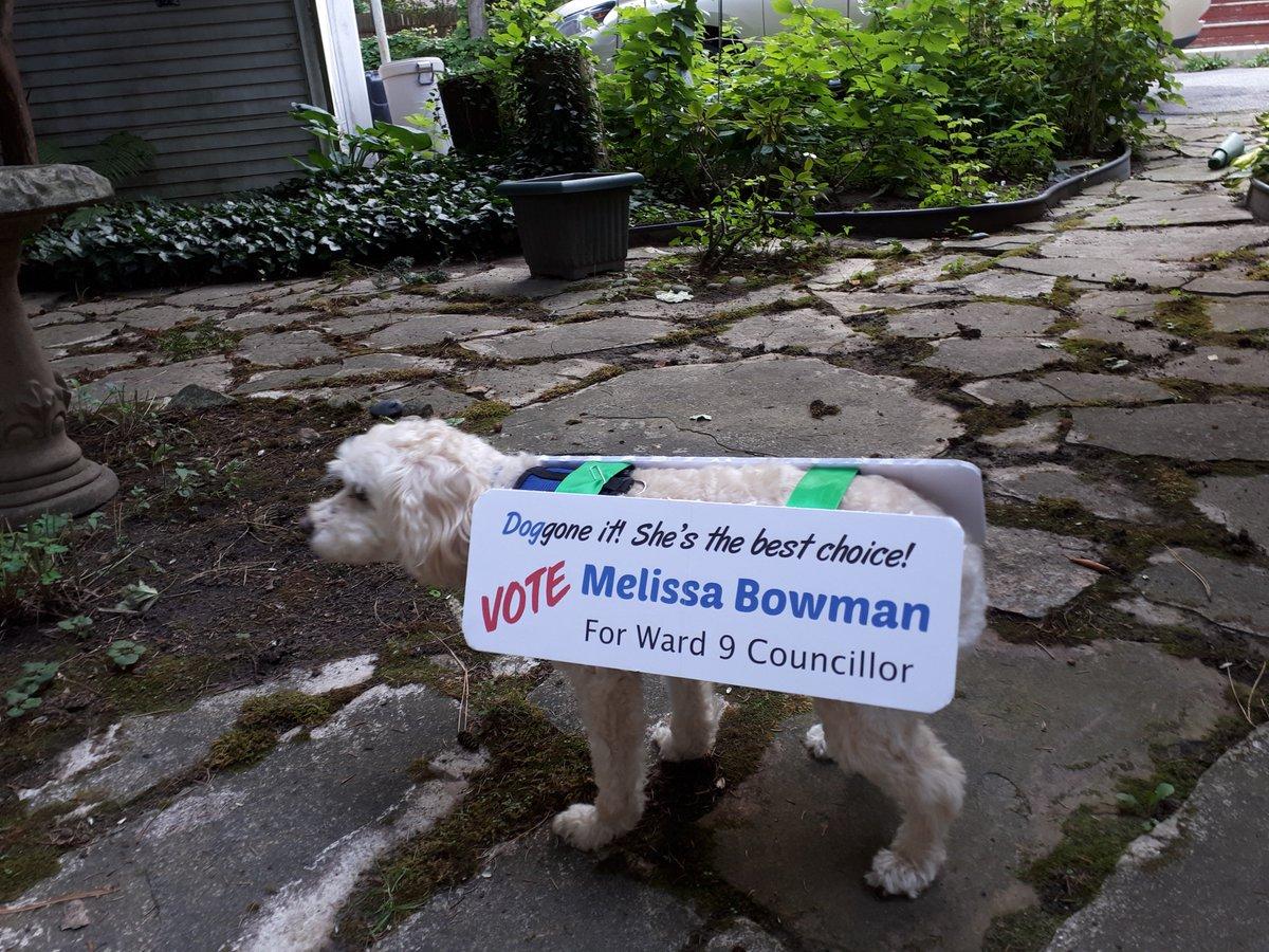 Melissa Bowman on Twitter: