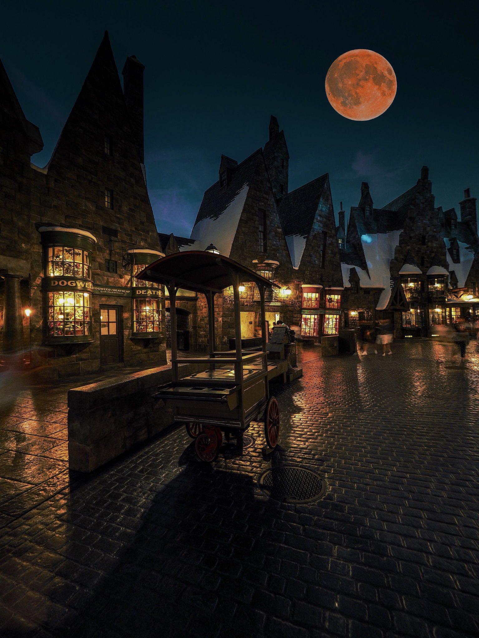 Happy Birthday, Harry Potter, The Boy Who Lived.