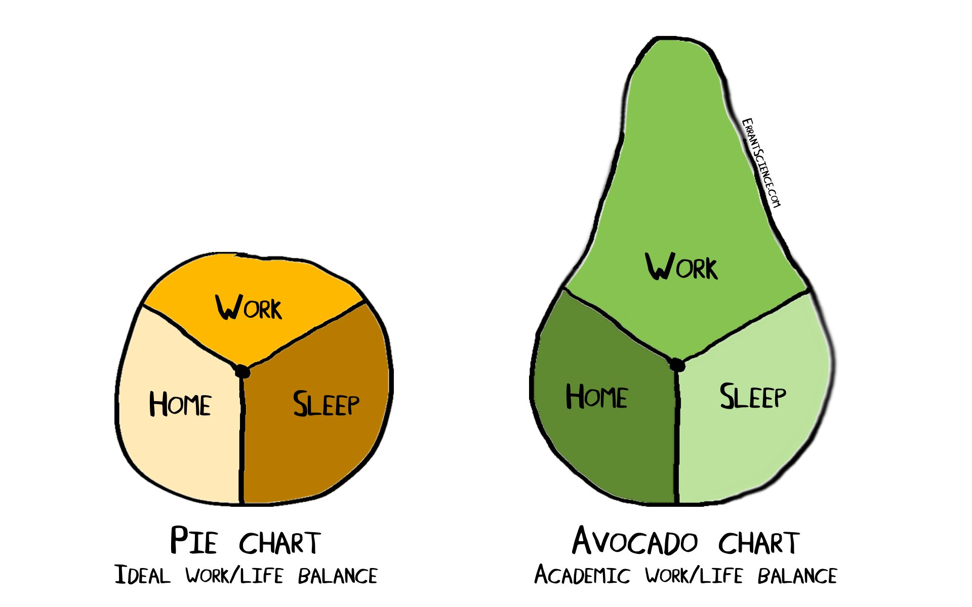 Errantscience On Twitter Apparently Its Nationalavocadoday
