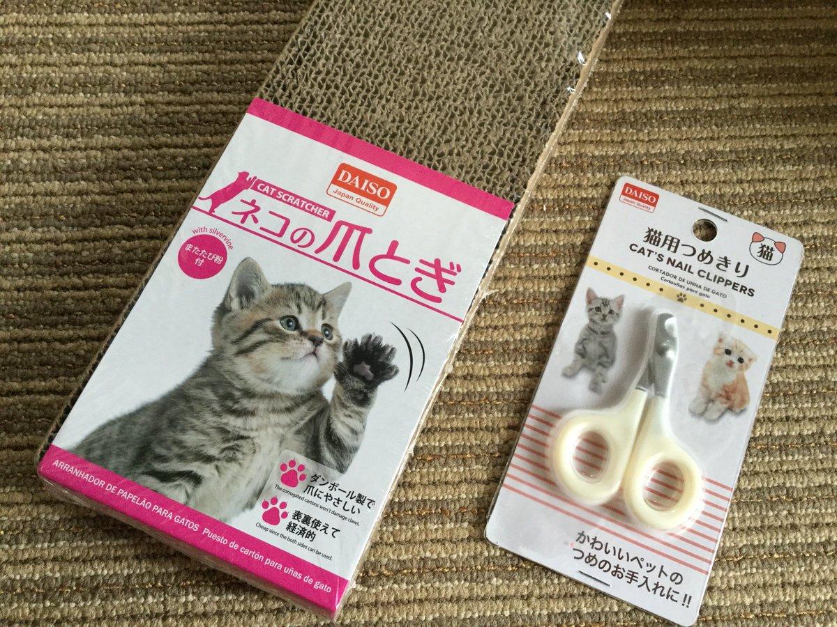 test ツイッターメディア - 子ネコさん、マットで爪とぎして全然とげてなくて~って、言うかマットでしちゃダメなんだけど・・で、コレ買ってみました。初めての爪切りは病院でやりましたが使えるかなぁ? #子猫 #里親 #ネコ好きさんと繋がりたい #猫風邪 #猫のいる暮らし #ネコの行動 #居場所 #お手入れ #DAISO #100均 https://t.co/mz7g7rRFGn