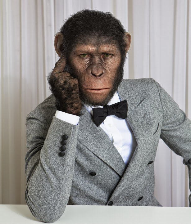 full stop why apes look like Like commies say: expropitaing the expropiatorschavez says he was zapped by the zog ptb and it gave him cancerand another thing patwhiggers are not just young stupid whites wanting to be niggersits conservative types who look just like us and are total zog zombies.