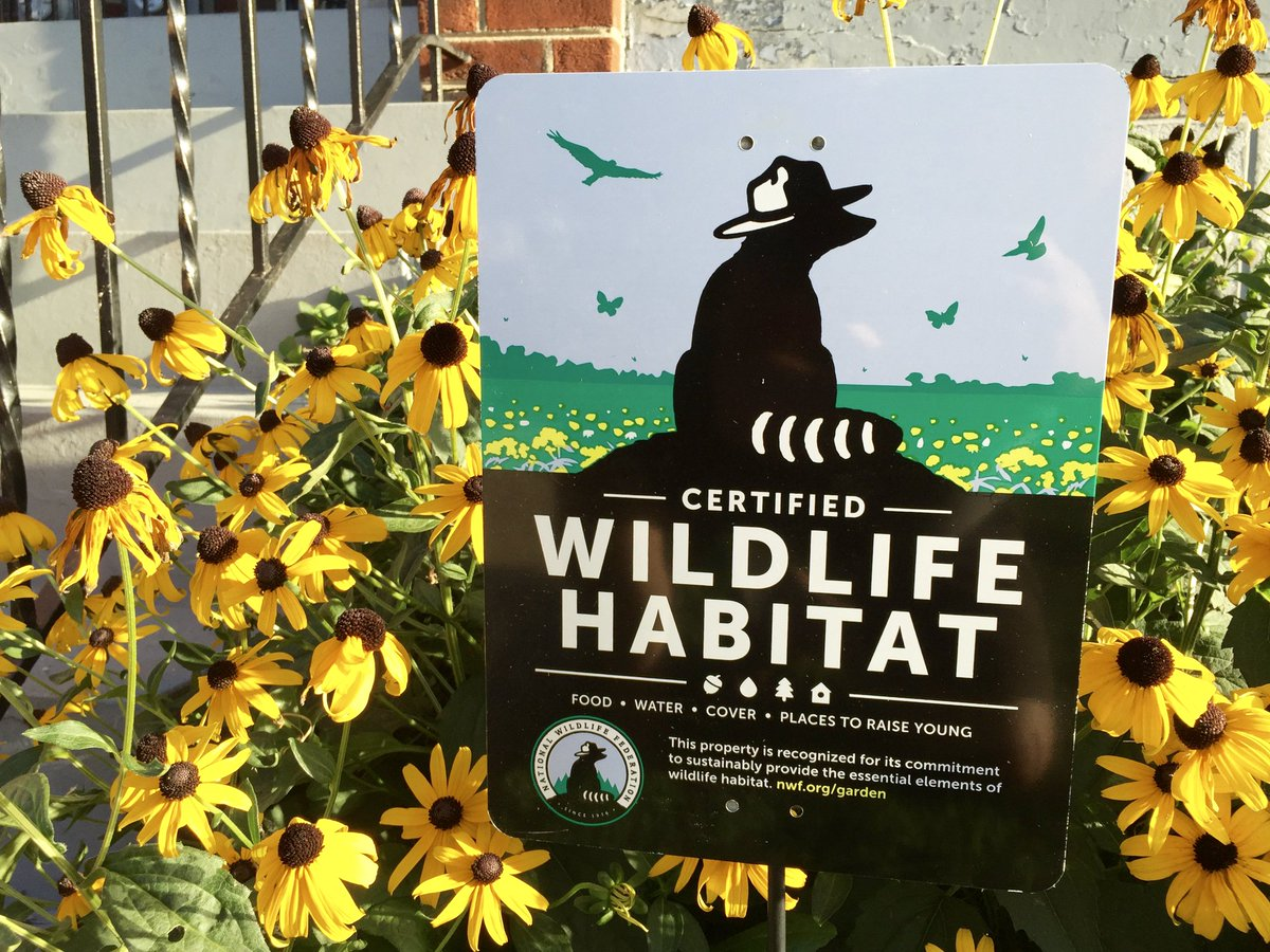 Good news! The Little City has been re-certified as an active Community Certified Wildlife Habitat (@Garden4Wildlife) with the @NWF. Learn more on the NWF website, which includes a Cherry Hill Farmhouse cameo! nwf.org/Home/Garden-fo…