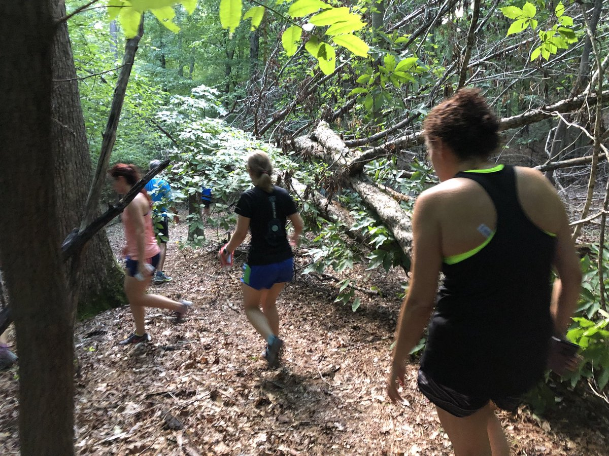test Twitter Media - Exploring. #summercamp #trailrunning #fleetfeetral https://t.co/OHZlxOWycf