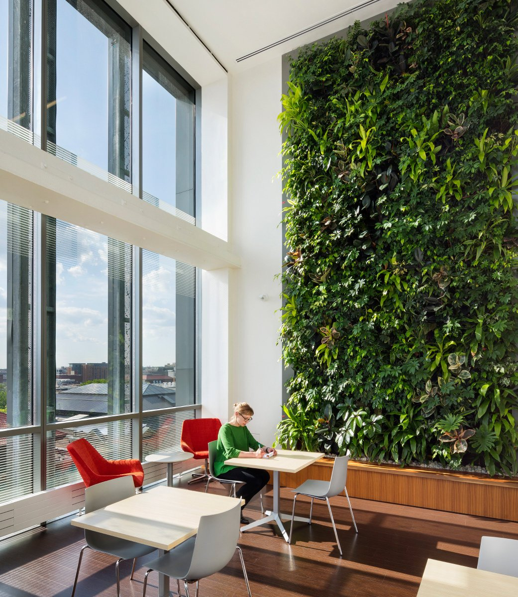 Diamond Schmitt در توییتر Our 5th Green Wall Award From Green Roofs For Healthy Cities Grhcna Today For Weiser Hall Umich In Ann Arbor This Vertical Arbor Has 4 Double Height Living Walls