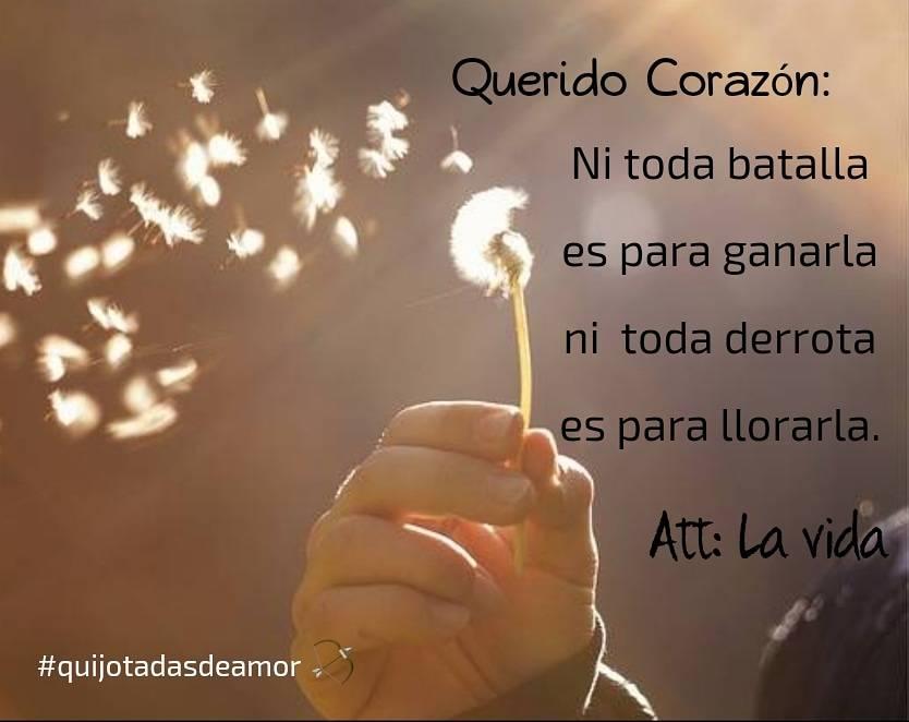 Quijotadas De Amor On Twitter Quijotadasdeamor Querido