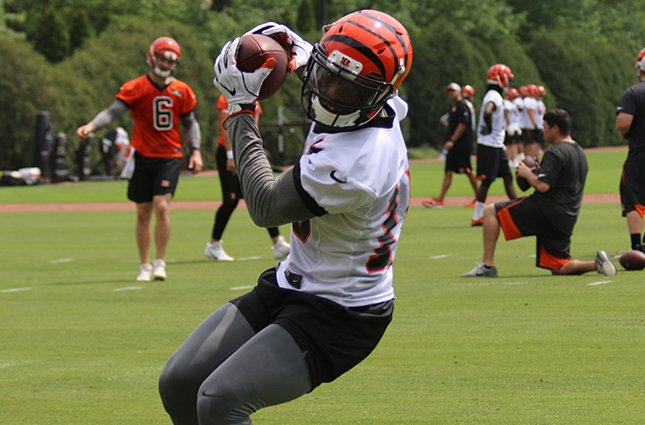 #Bengals eye young WRs with release of LaFell.  #SeizeTheDEY   ��: https://t.co/woXRqINc24 https://t.co/H3t9fxy6Ip